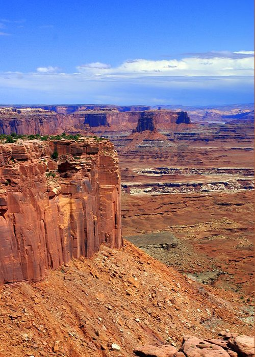 Canyonlands National Park Greeting Card featuring the photograph Canyonlands 4 by Marty Koch