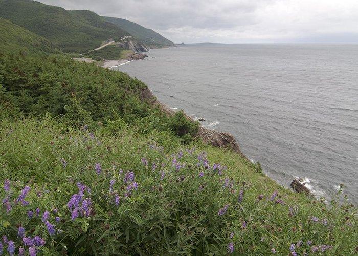 Cape Breton Greeting Card featuring the photograph Cape Breton Coast by Sven Brogren
