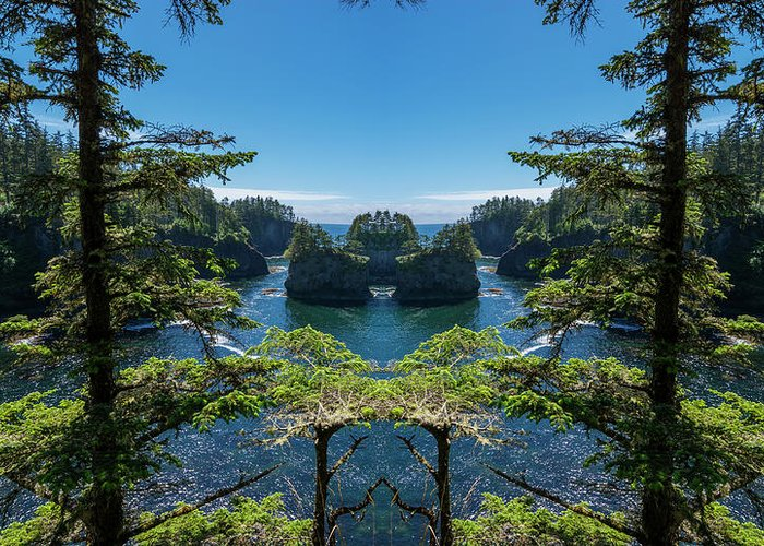 Cape Flattery Greeting Cards