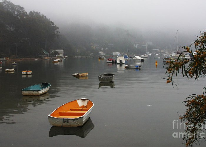 Mist Greeting Card featuring the photograph Careel Bay Mist by Sheila Smart Fine Art Photography