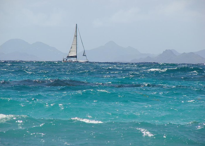Landscape Greeting Card featuring the photograph Caribbean Sailing by Margaret Bobb