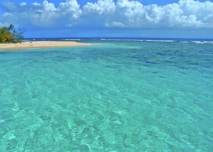 Water Greeting Card featuring the photograph Caribbean Water by Scott Mahon