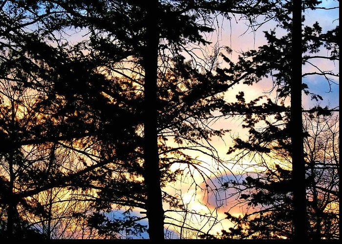 #cariboodistrictsunset Greeting Card featuring the photograph Cariboo District Sunset by Will Borden