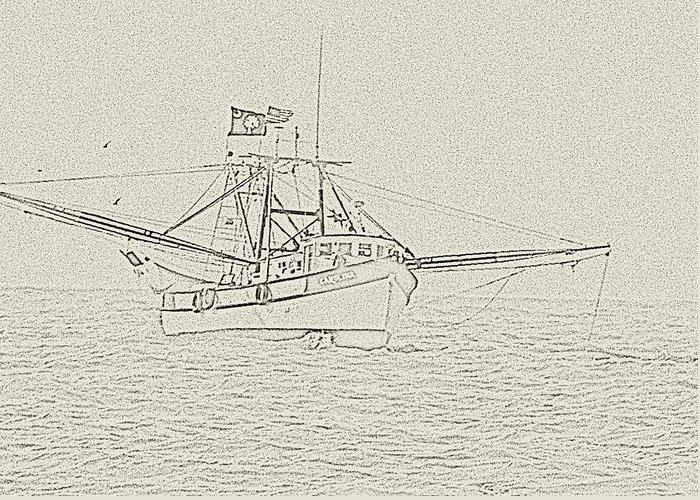 Shrimpboat Greeting Card featuring the photograph Carolina by Ted Putman