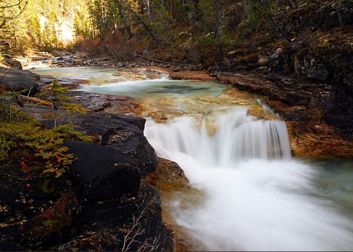 Beauty Creek Greeting Card featuring the photograph Cascade On Beauty Creek by Larry Ricker