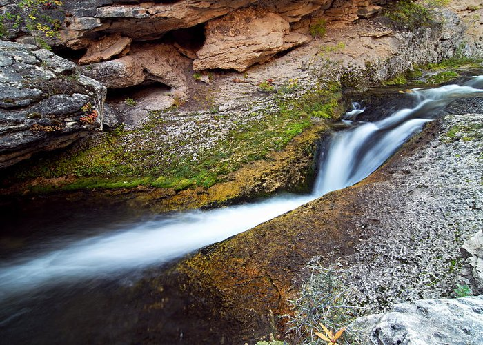 Crazy Woman Creek Greeting Card featuring the photograph Cascade On Crazy Woman Creek by Larry Ricker