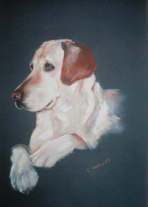 Dog Greeting Card featuring the painting Casey by Carol Mueller