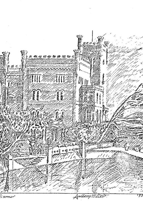 Miramare Greeting Card featuring the drawing Castello Di Miramare by Anthony Meton