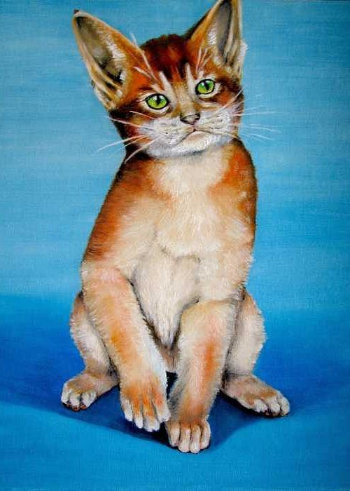Cat Greeting Card featuring the painting Cat Original Oil Painting by Natalja Picugina