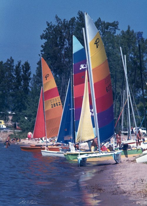 Photography Greeting Card featuring the photograph Catamarans At The Ready by Frederic A Reinecke