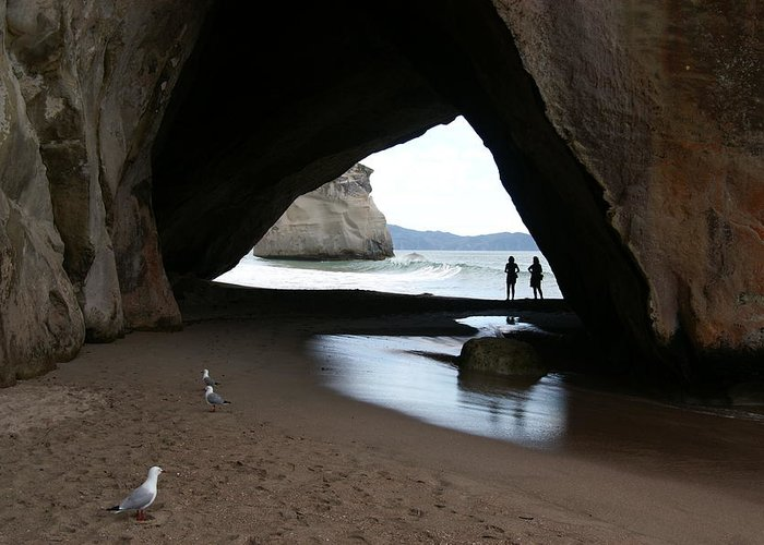 Cathedral Greeting Card featuring the photograph Cathedral Cove by Jessica Rose