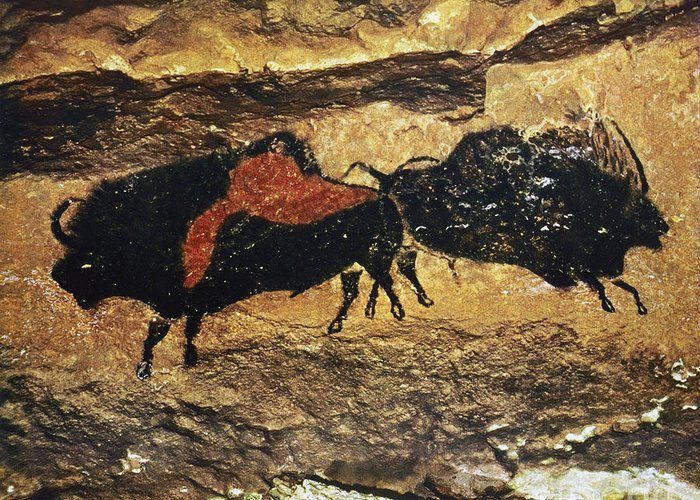 15000 Greeting Card featuring the photograph Cave Art: Bison by Granger