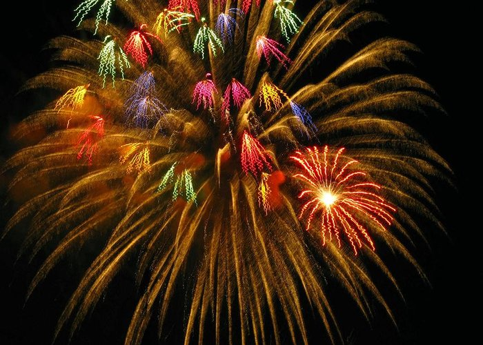 Fireworks Greeting Card featuring the photograph Celebrate by Rhonda Barrett