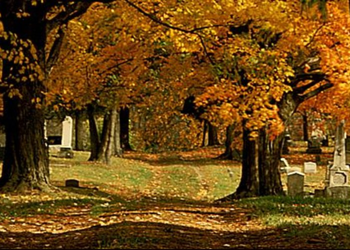 Fall Greeting Card featuring the photograph Cemetary Road In Autumn by Roger Soule