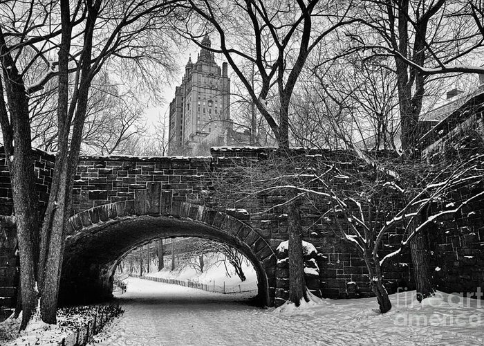 Cold Greeting Card featuring the photograph Central Park And The San Remo Building by John Farnan