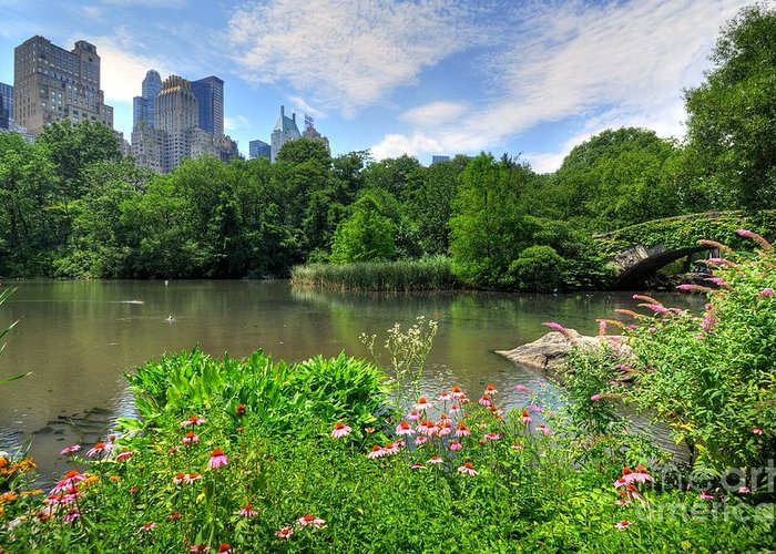 Central Park Greeting Card featuring the photograph Central Park by Kelly Wade