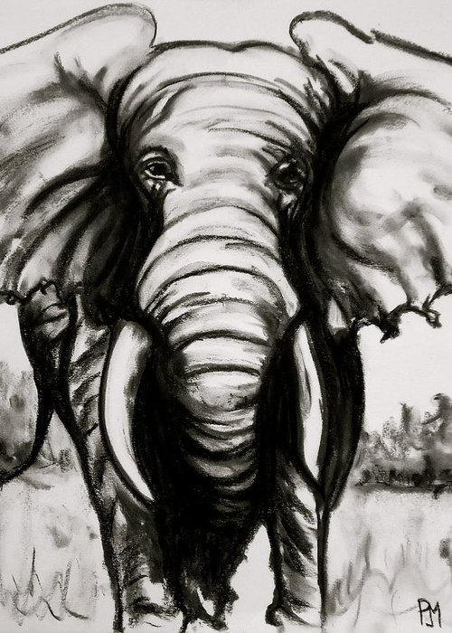 Elephant Greeting Card featuring the drawing Charcoal by Pete Maier