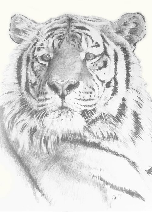 Tiger Greeting Card featuring the mixed media Charisma by Barbara Keith