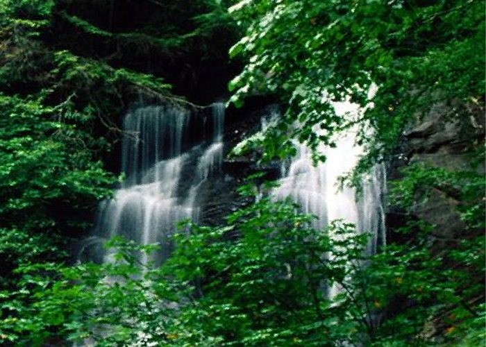 Landscape Greeting Card featuring the photograph Chattahoochee Waterfall by Vicky Brago-Mitchell