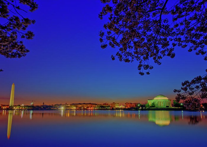Washington Dc Greeting Card featuring the photograph Cherry Blossoms Sunrise by Craig Fildes