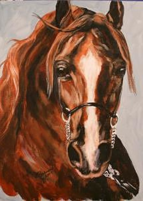 Chestnut Horse Arabian Western Greeting Card featuring the painting Chestnut Beauty by BJ Redmond