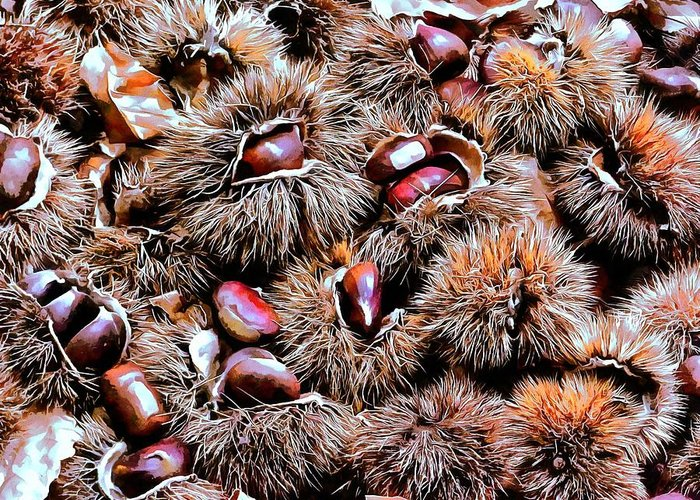 Chestnut Greeting Card featuring the photograph Chestnut Overload by Dorothy Berry-Lound