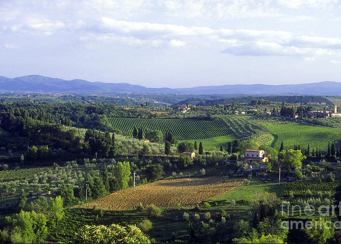 Chianti Greeting Card featuring the photograph Chianti Region In Italy by Gregory Ochocki and Photo Researchers
