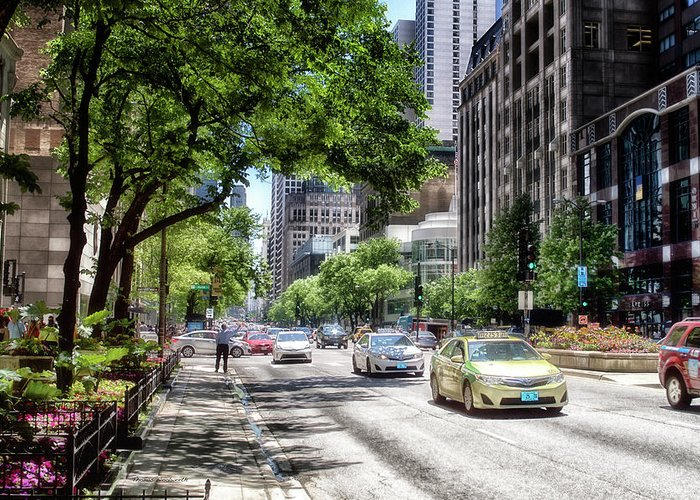 Cities Greeting Card featuring the photograph Chicago Hailing A Cab In June by Thomas Woolworth