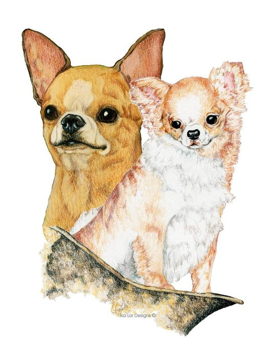 Chihuahua Greeting Card featuring the drawing Chihuahuas by Kathleen Sepulveda