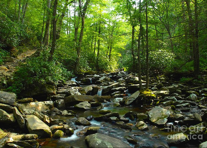 Trail Greeting Card featuring the photograph Chimney Tops Trail by David Lee Thompson