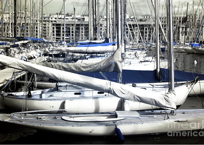 Choices In The Port Greeting Card featuring the photograph Choices In The Port by John Rizzuto