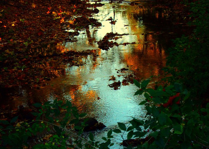 Creek Greeting Card featuring the photograph Chris' Creek Autumn Sunset by Martin Morehead