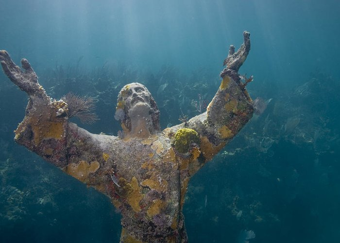 Christ Of The Abyss; Dry Rocks Reef; Florida; Ley Largo; Scuba Diving; Underwater; Coral Greeting Card featuring the photograph Christ Of The Abyss Statue On Dry Rocks Reef In Key Largo Florida by Bob Hahn