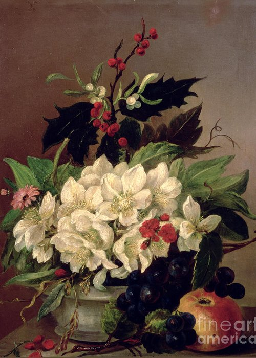 Holly Berry Still Life Greeting Cards