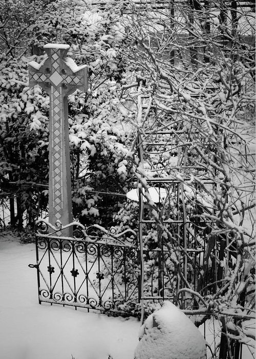 Christmas Greeting Card featuring the photograph Christmas Snow in the Garden by Teresa Mucha