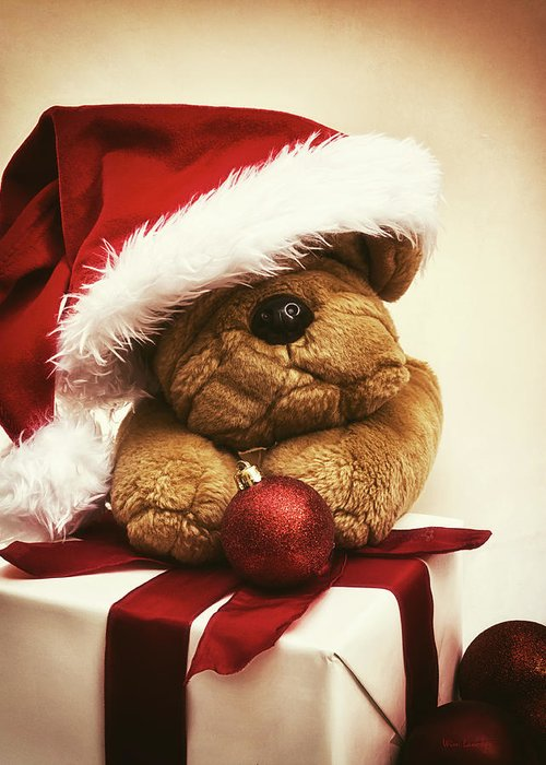Christmas Greeting Card featuring the photograph Christmas Teddy Bear by Wim Lanclus