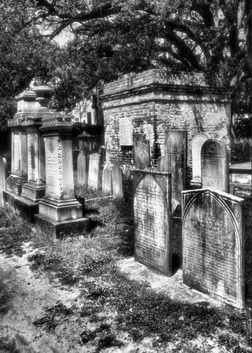 Cemetery Greeting Card featuring the photograph Churchyard Of Old Charleston by Steven Ainsworth