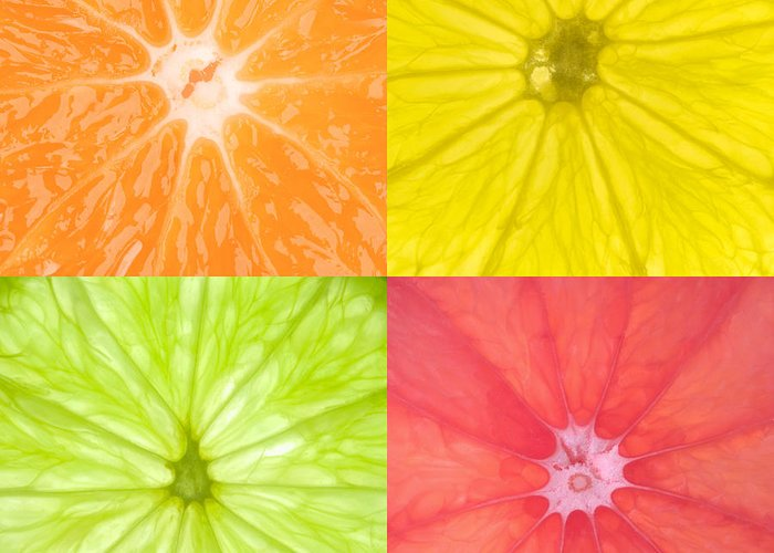 Citrus Greeting Card featuring the photograph Citrus Fruits by Richard Thomas