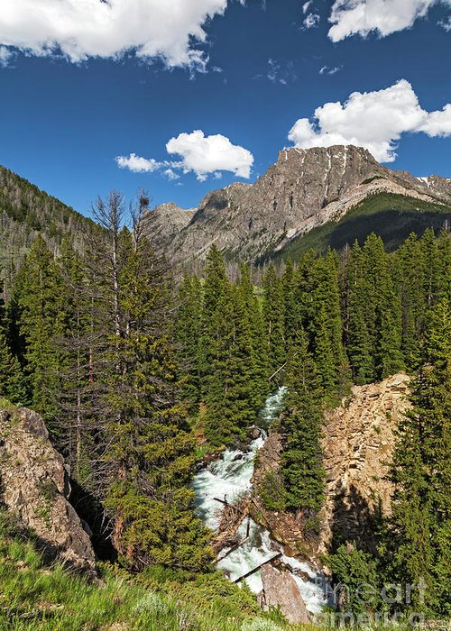 Clear Creek Greeting Card featuring the photograph Clear Creek, Flat Top Mountain by Daryl L Hunter
