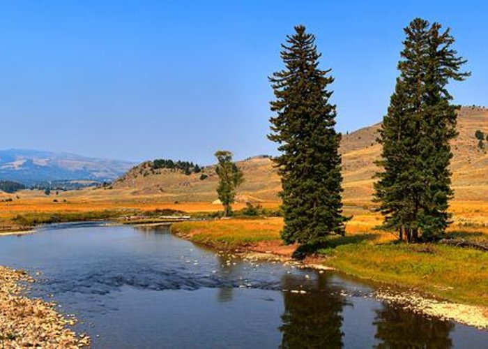 Slough Creek Greeting Card featuring the photograph Clear Skies Over Slough Creek by Adam Jewell