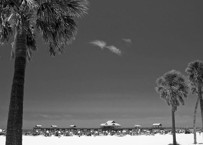 3scape Greeting Card featuring the photograph Clearwater Beach Bw by Adam Romanowicz