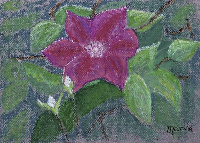Pastel Greeting Card featuring the pastel Clematis by Marina Garrison