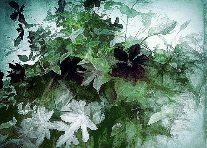 Vine Greeting Card featuring the photograph Clematis On The Vine by Leslie Montgomery