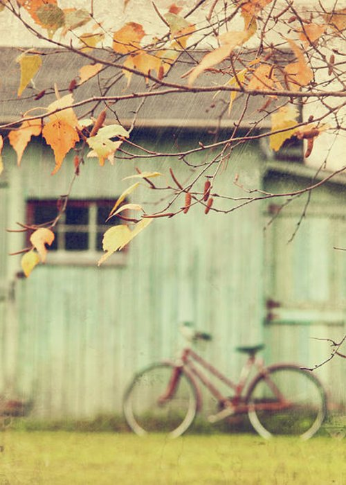 Agriculture Greeting Card featuring the photograph Closeup Of Leaves With Old Barn In Background by Sandra Cunningham