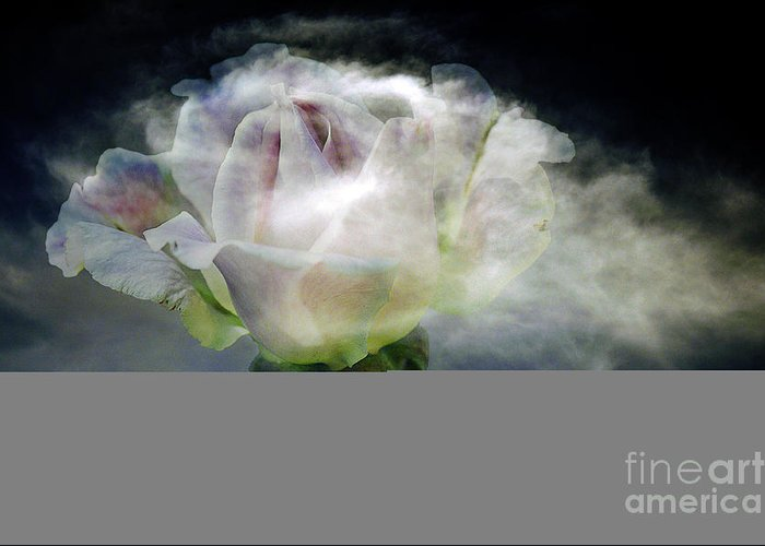 Clay Greeting Card featuring the photograph Cloud Rose by Clayton Bruster