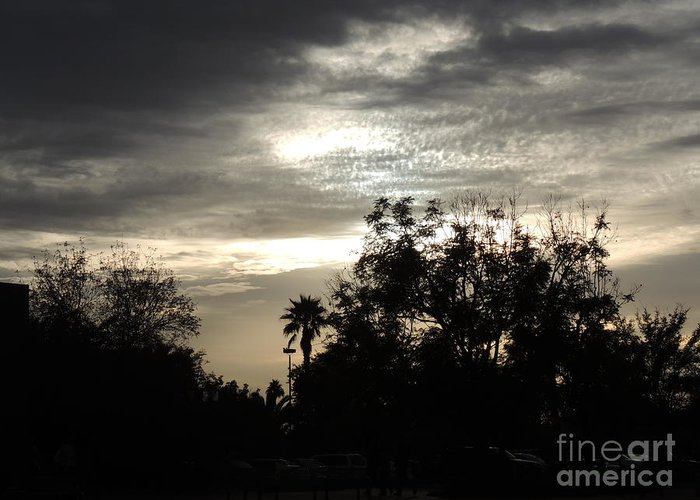 Palm Greeting Card featuring the photograph Clouds And Silhouetted Trees by Jim Williams Jr