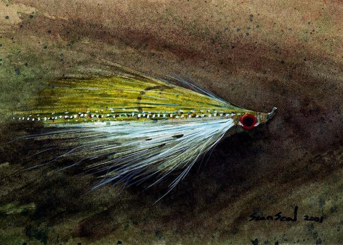 Fishing Fly Greeting Card featuring the painting Clouser Minnow by Sean Seal