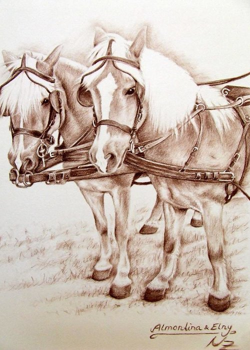 Horses Greeting Card featuring the drawing Coach Horses by Nicole Zeug