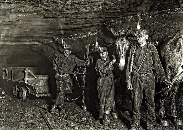 Hine Greeting Card featuring the photograph Coal Mine Mule Drivers 1908 by Daniel Hagerman