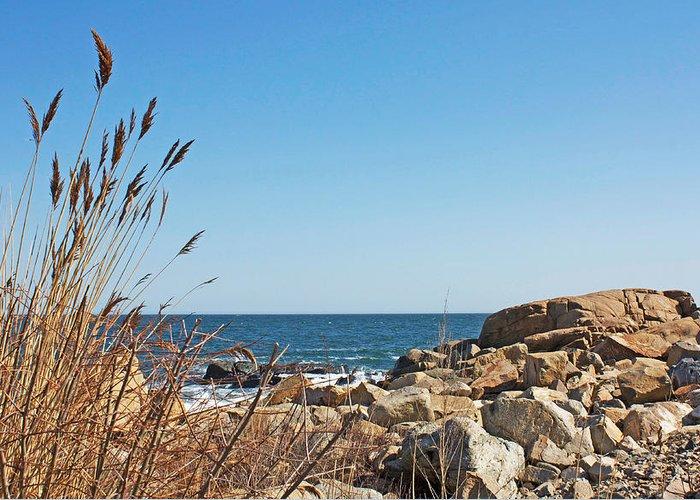 Maine Greeting Card featuring the painting Coast by Barbara Busenbark